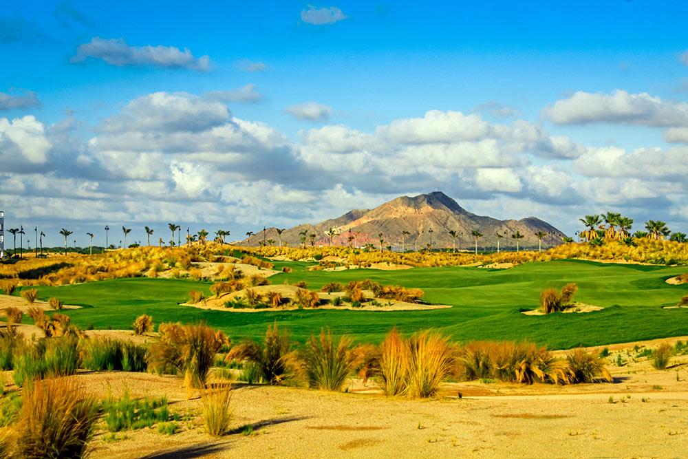 Saurines de La Torre Golf, Murcia